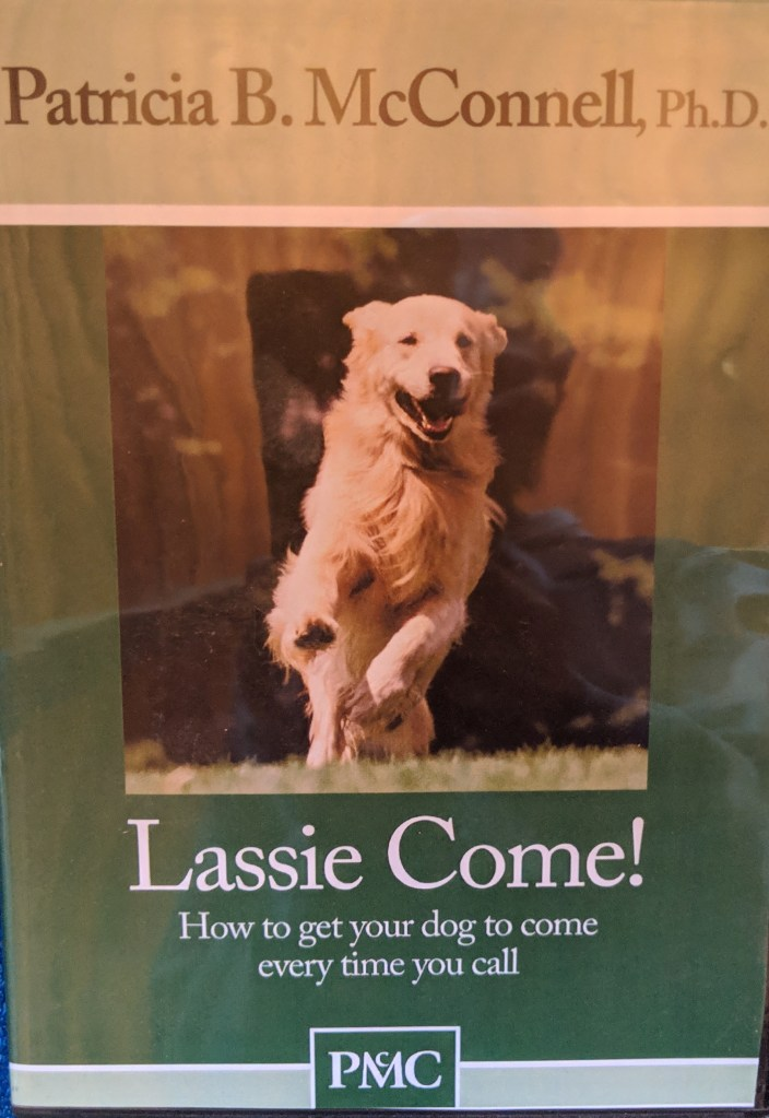 Lassie Come