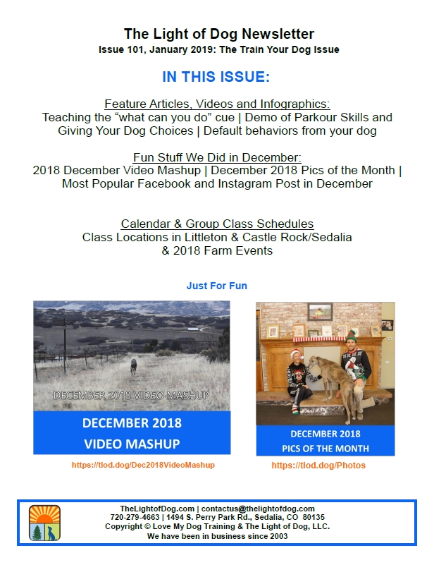 January 2019 Print Newsletter