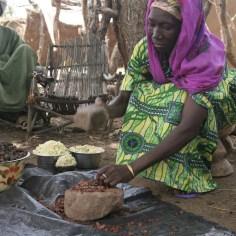 Women processing shea nuts