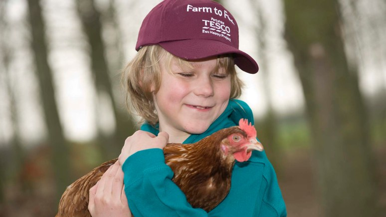 North Scarle Primary School pupil Alfred Newbold, nine, at the Happy Egg Company in Beckingham, Lincolnshire, for a Farm to Fork trail part of the Tesco Eat Happy project. Photo: Chris Vaughan