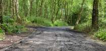 The car was set on fire on a pathway near Sycamore Close in Lincoln, leading into Hartsholme Park.