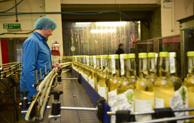 Belvoir Fruit Farms now exports £2 million worth of drinks to about 30 countries as well as having a strong UK following. Photo: Steve Smailes for Lincolnshire Business