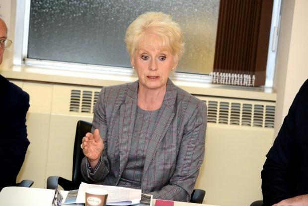 Liz Redfern, Leader of North Lincolnshire Council. Photo: Stuart Wilde