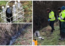 Environment Agency probes pollution in South Hykeham dyke
