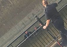 Divers search for Sincil Bank stab weapon