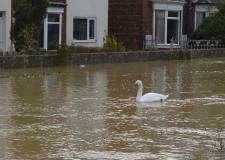 Met Office issues weather warning for more rain in and around Lincoln