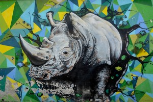 A rhinoceros street art in Buenos Aires, Argentina.