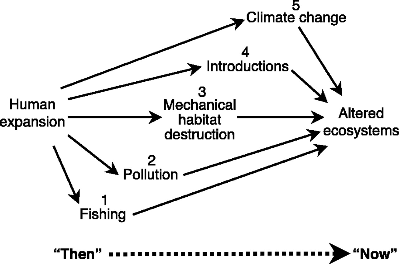 Marine Reserves as linked social-ecological systems