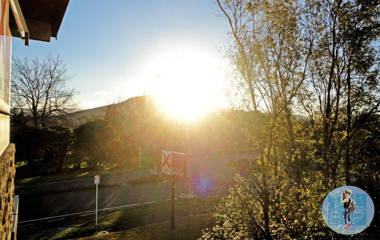 Base Hostel Rotorua Review