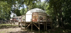 quirky accommodation with canopy and stars from-below_cs_gallery_preview