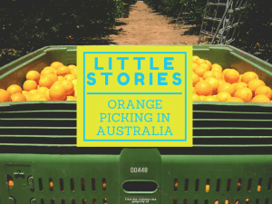 Little Stories1