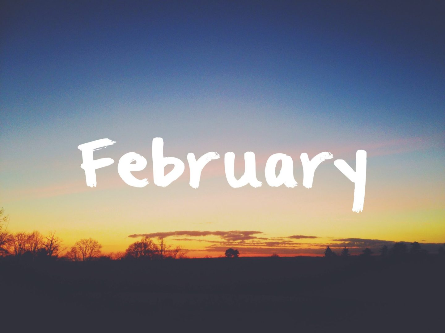 Monthly Catch Up: February 2016