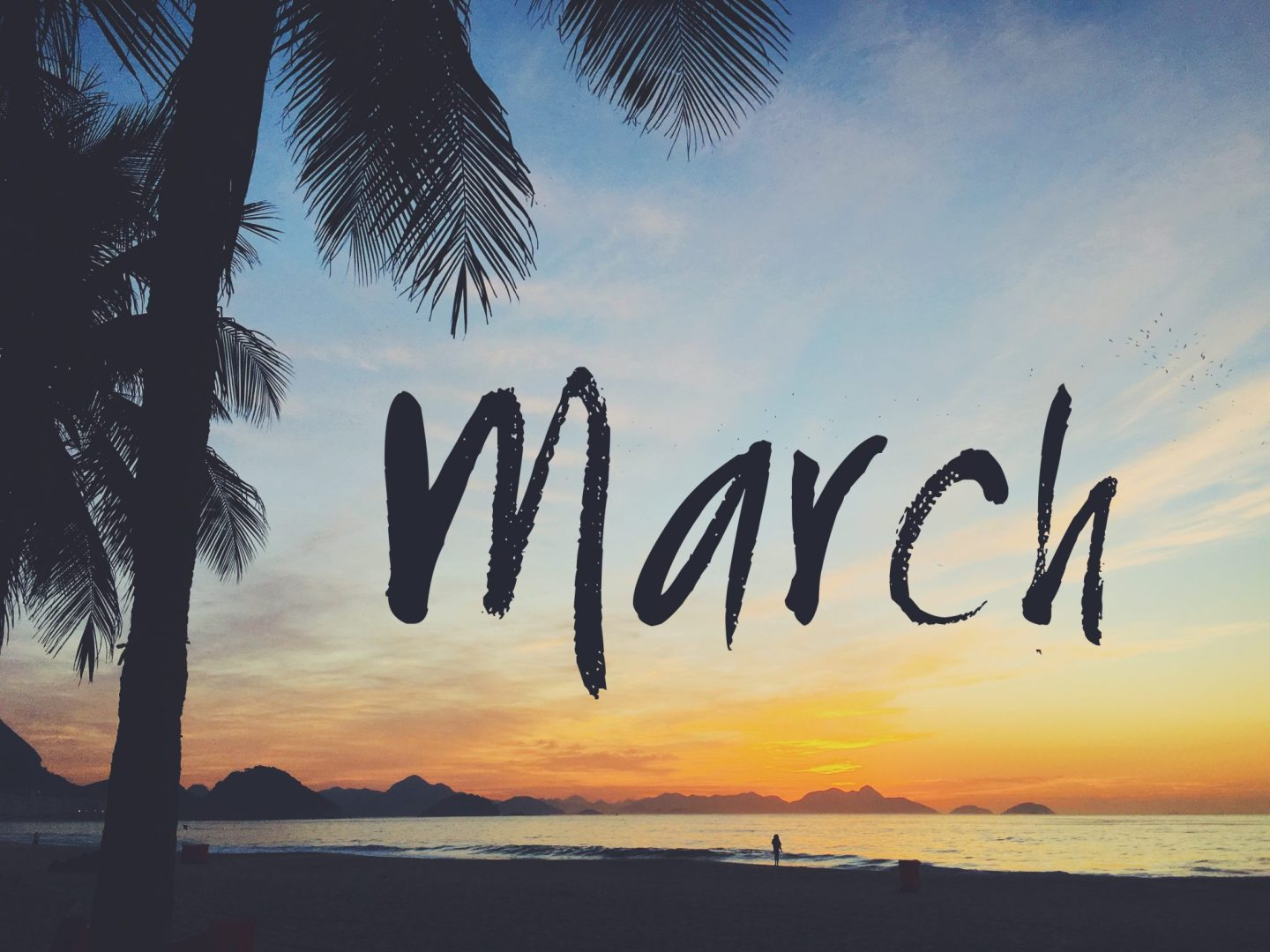 Monthly Catch Up: March 2016