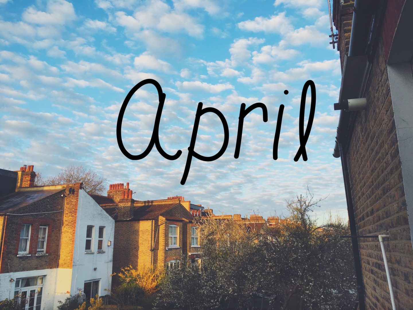 Monthly Catch Up: April 2016