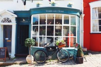 A guide to a staycation in the New Forest - lymington