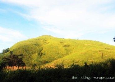 Mount Tagapo Hike