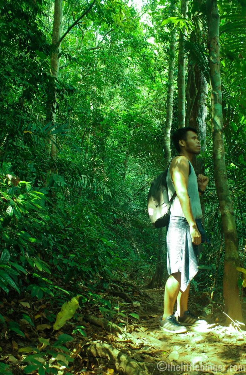 Mt Makiling solo portrait