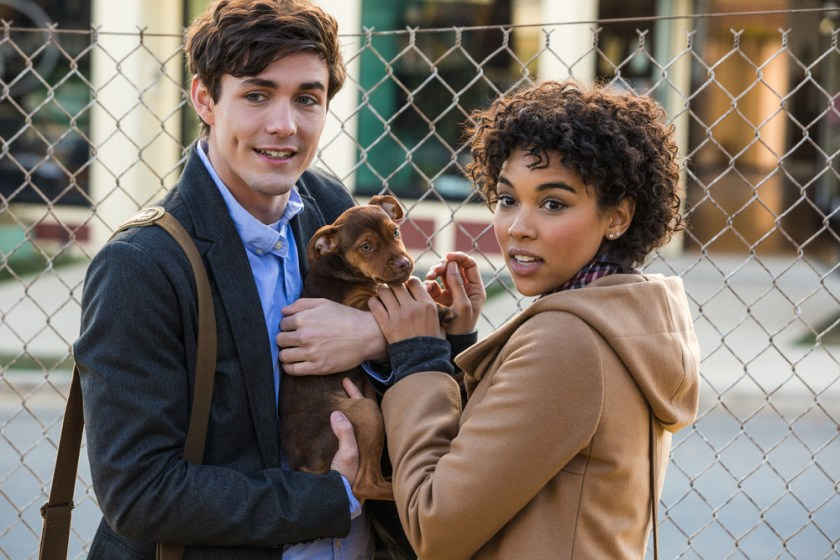 Lucas (Jonah Hauer-King) & Olivia (Alexandra Shipp) with baby Bella in Columbia Pictures' A DOG'S WAY HOME.   The Little Binger