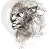 Allyson Haller - Werewolves