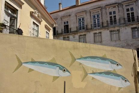 Sardines at Graça's neighbourhood