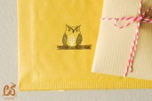 An owl perching on an envelope