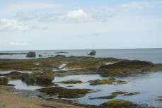 One of the many rocky beaches along the shore
