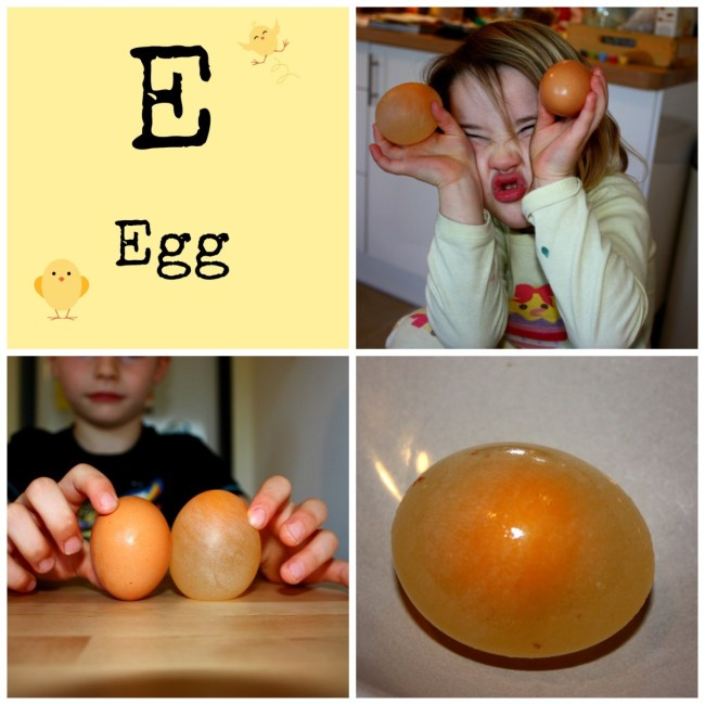 E for Egg