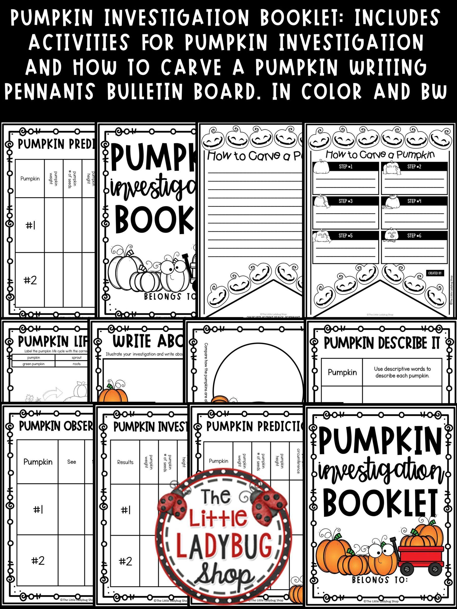 Pumpkin Investigation Worksheet How To Carve Pumpkin