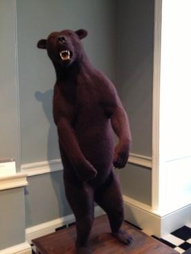 Crochetdermy brown bear by Shauna Richardson