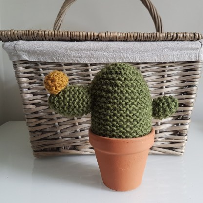 Cactus Knitting Pattern
