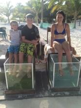The fish spa