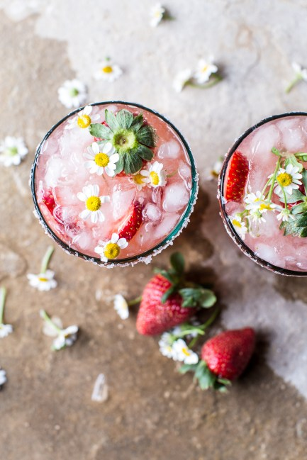 Strawberry-Chamomile-Paloma-5