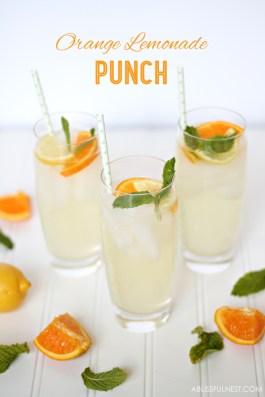 Orange-Lemonade-Punch-Recipe-by-A-Blissful-Nest-007