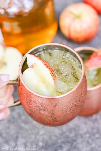 bourbon-cider-sours-4-of-8