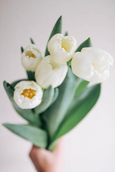 spring-tulips-almond-cake-recipe