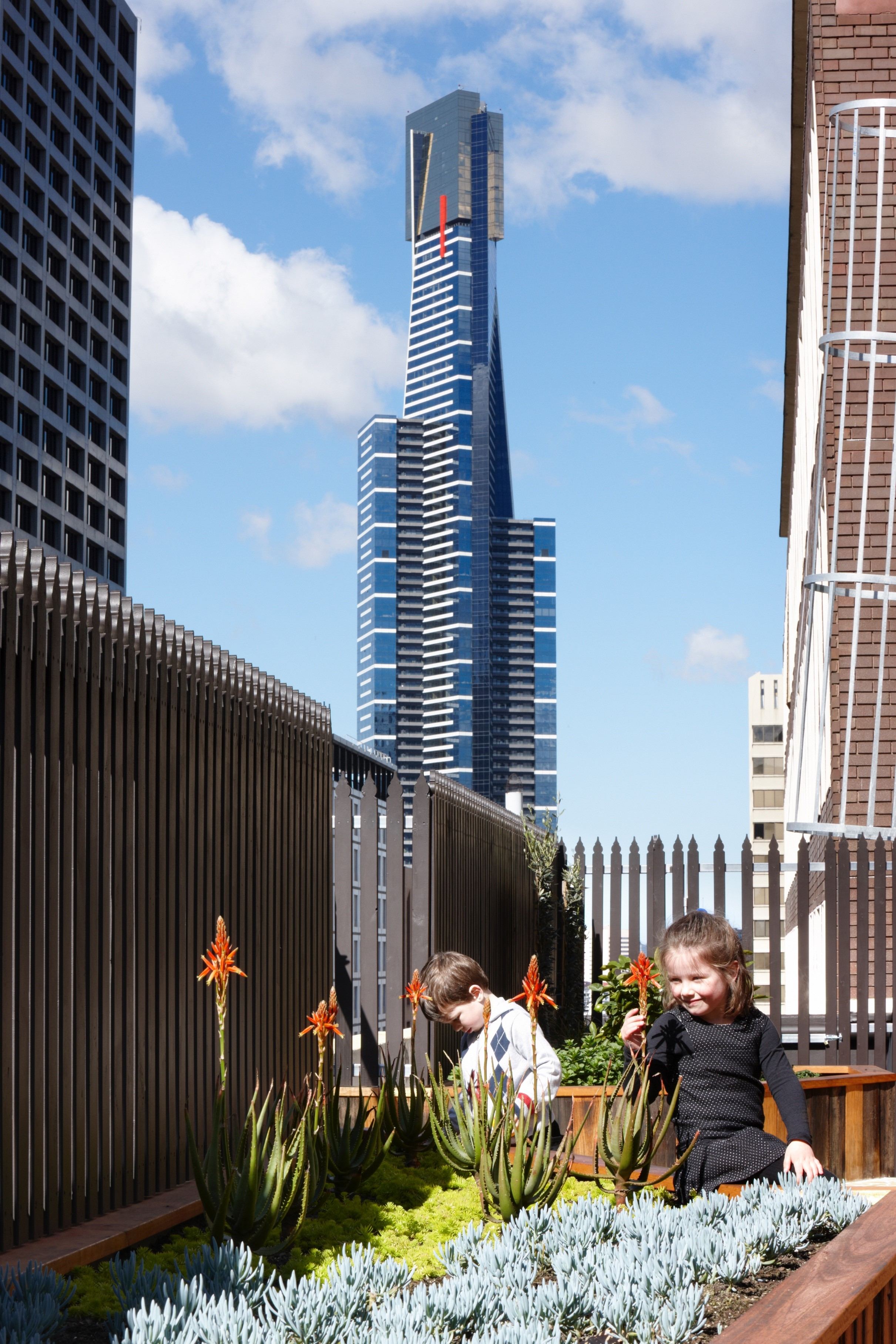 Gallery Of Growing Up Green Rooftop By Bent Architecture Local Australian Architecture & Design Melbourne, Vic Image 5