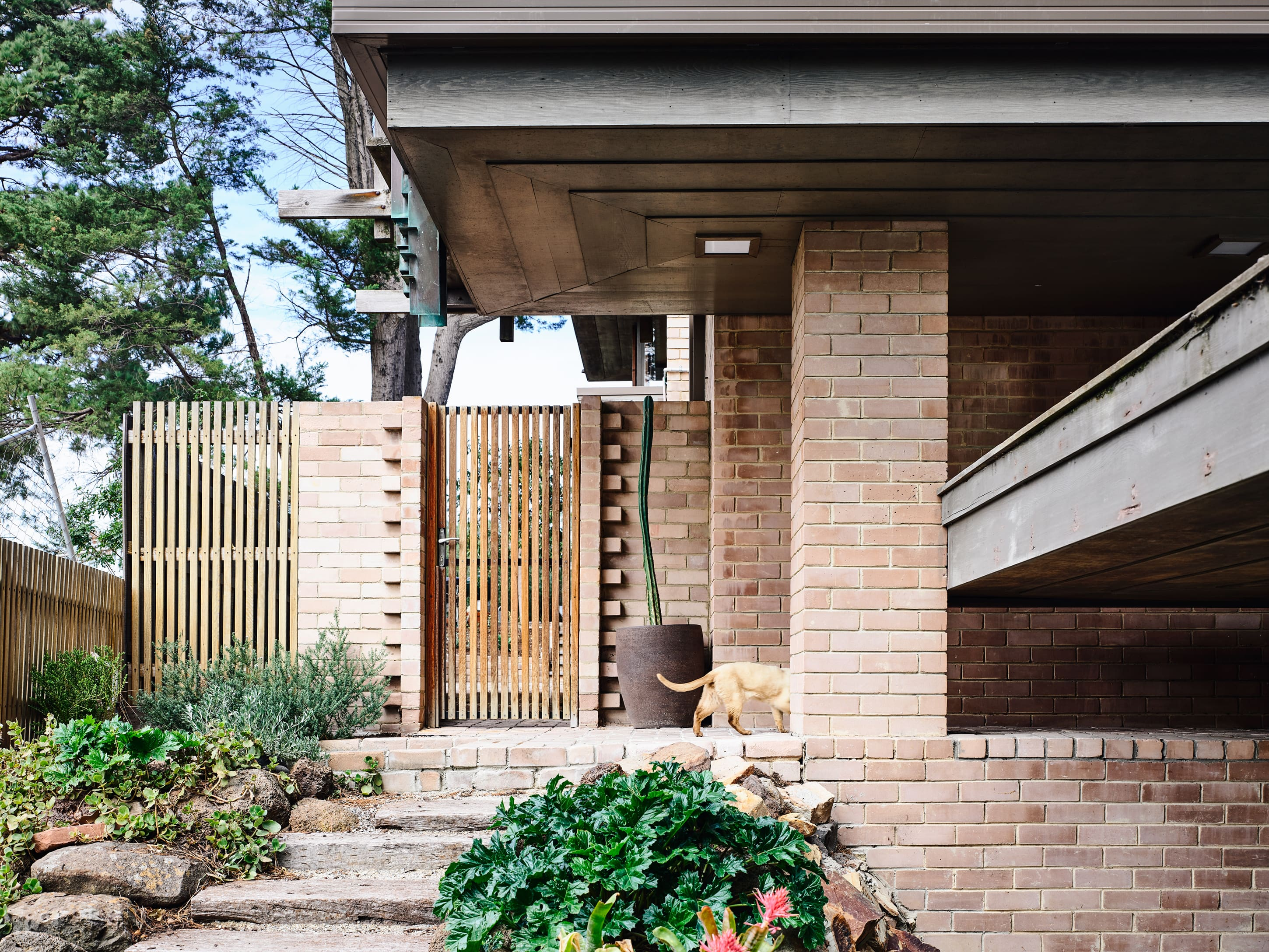 Gallery Of The Godsell House By David Godsell Local Australian Architecture & Design Beaumaris, Vic Image 2