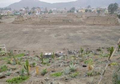 Terrain du Centro de Artes y de Humanidad Lima