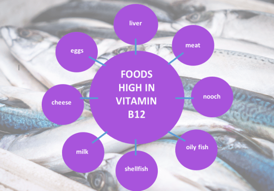 vitamin B12 rich foods