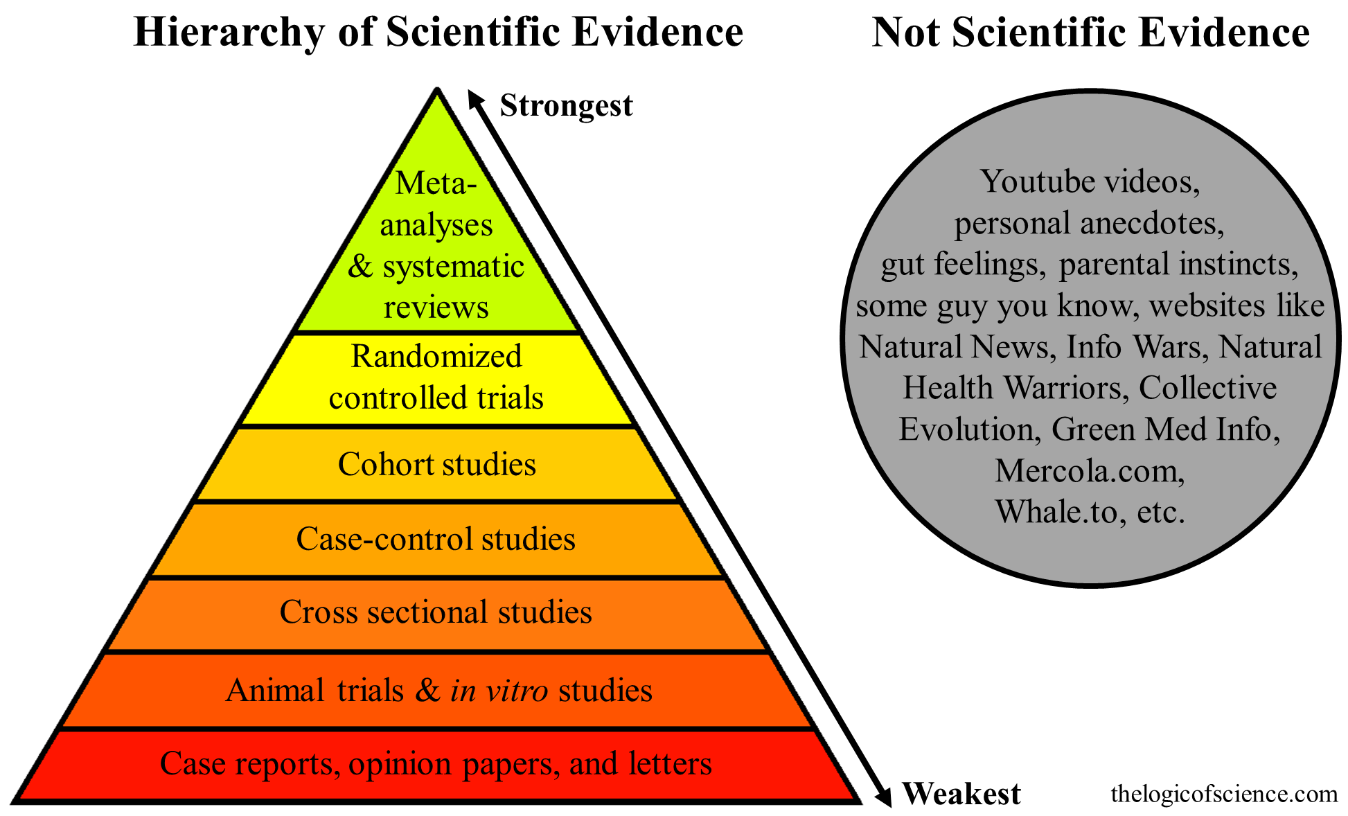 The Hierarchy Of Evidence Is The Study's Design Robust? The Logic