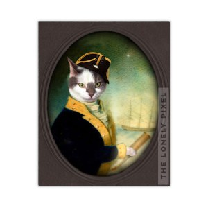 Sea Captain Cat