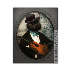 Black Cat Guitar