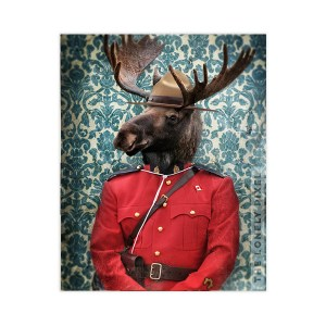 Canadian Moose Wall Art