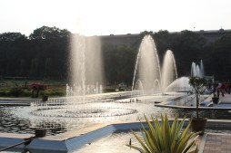 Fountains, minus the bugs