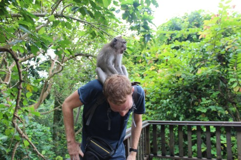 This monkey was insitant on checking Jamie for food