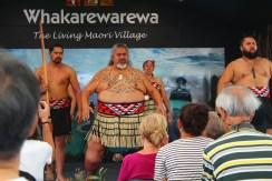Weird Maori cultural shoe