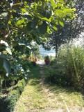 another lovely garden