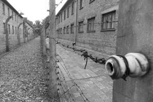 Auschwitz