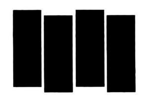 BLACK+FLAG-20100623-122324