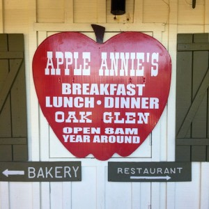 Apple Annie's had AMAZING apple pie (photo by Nikki Kreuzer)